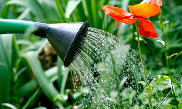 Використання стічних вод
