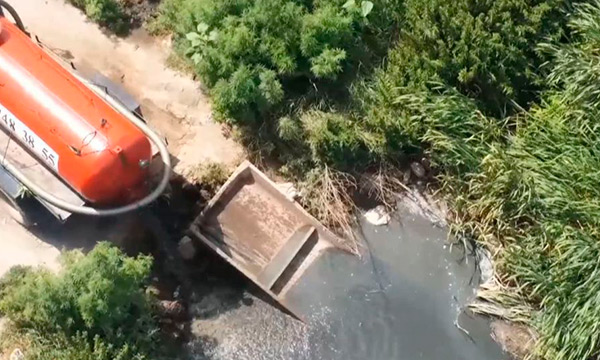 Жители села под Киевом возмущены: местный лес затопили нечистоты из отстойников